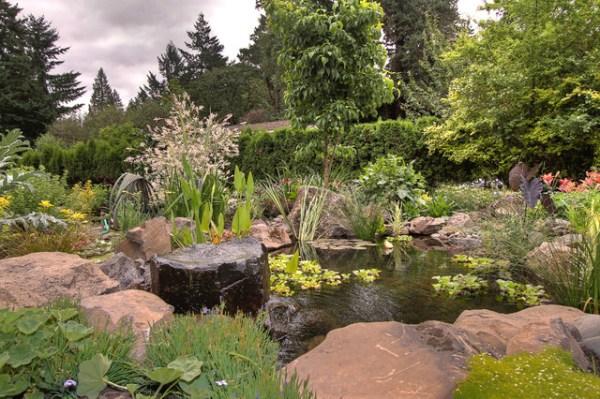 natural pond - traditional landscape