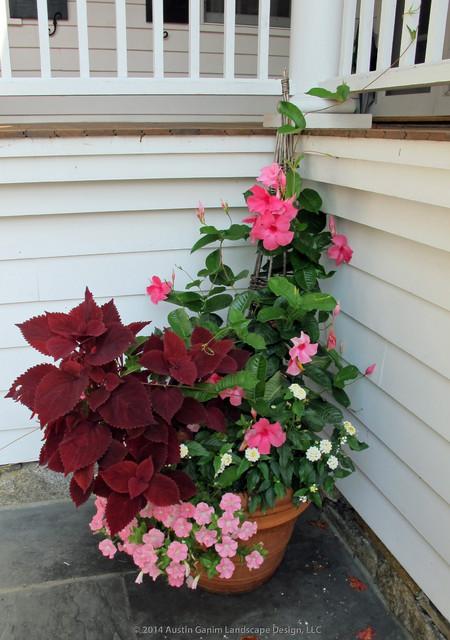 Planter Amp Container Garden Design Fairfield County CT
