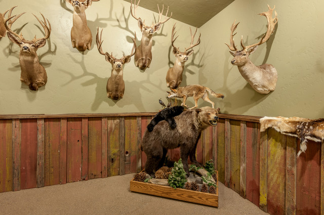 African Safari Game Room  HuntingFishing Trophy Room
