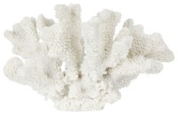 Large Resin Antler Coral - Sculptures - london - by Kelly ...
