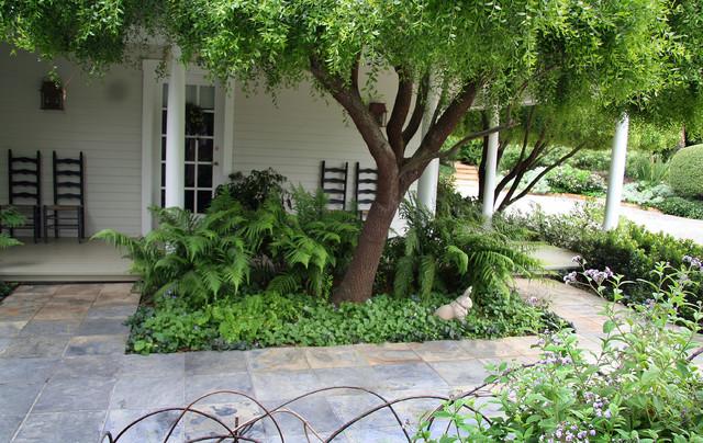 Fern Planter At Front Traditional Landscape Santa Barbara