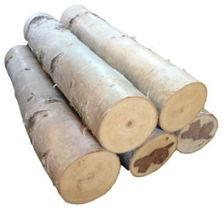 Large White Birch Fireplace Logs, Set of 5 - Traditional ...
