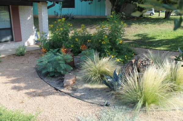 austin native landscaping - portfolio