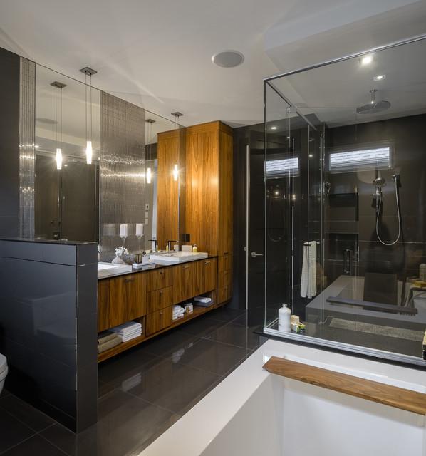 Astro Design's Contemporary Kitchen & Bathroom Design Contemporary