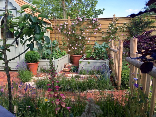 Gardening Trends For Clyde Property Blog