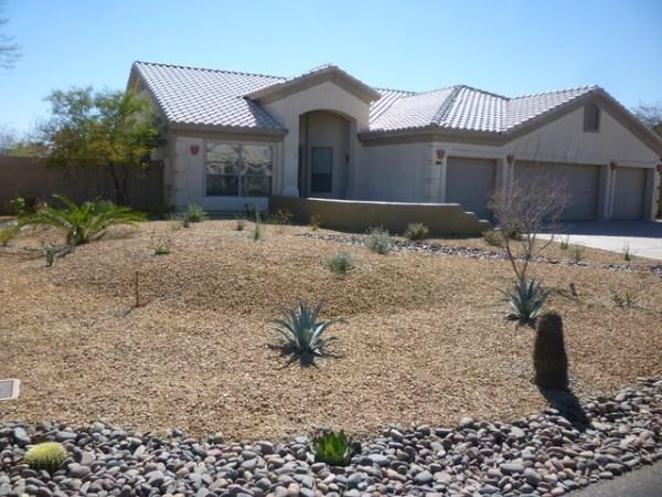 frontyard desert landscape - contemporary