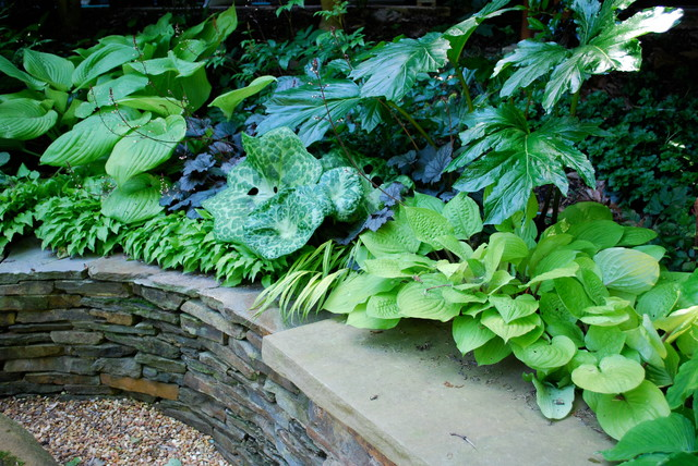 Jay Sifford Garden Design
