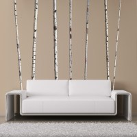 Wall Decals, Summer Birch Trees - Contemporary - Wall ...