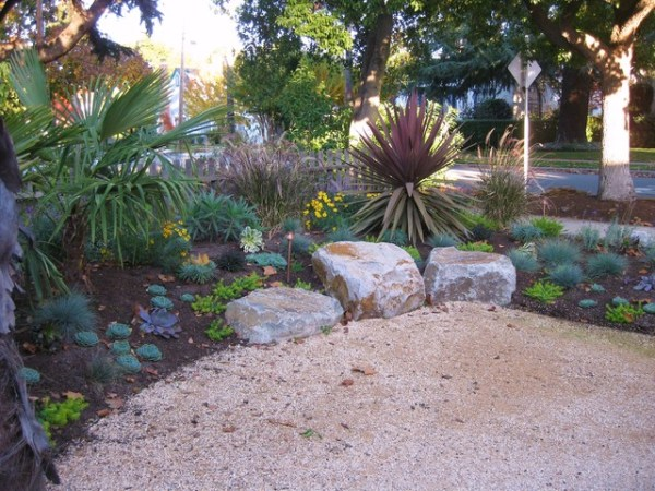 drought-tolerant maintenance