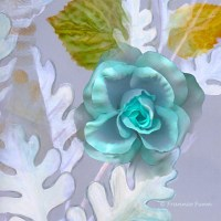 Blue Rose Floral Wall Mural - Contemporary - Wallpaper