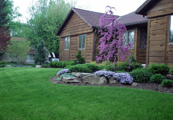 front yard landscapes - rustic