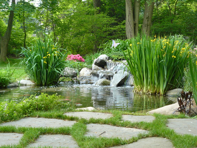 Pond in Rydal, Pa eclectic-landscape