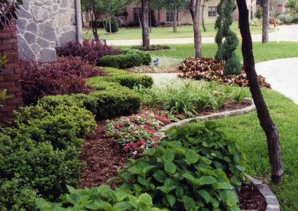 front yard landscape ideas - traditional