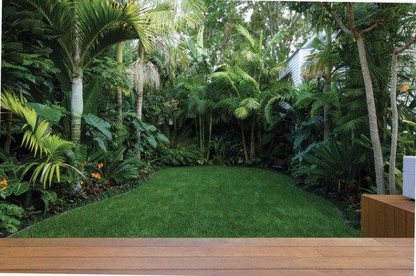tropical garden landscape introducing