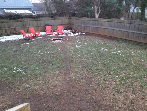 unwanted dog paths landscaping