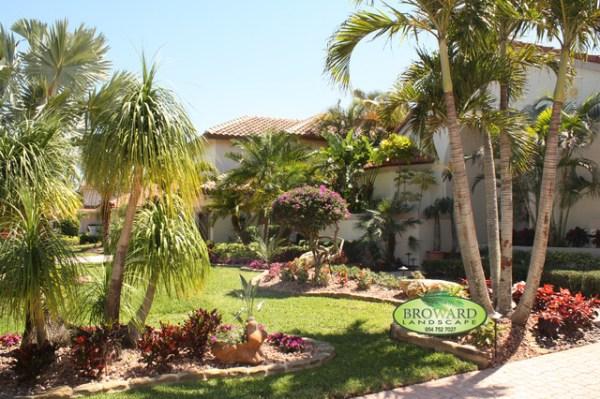 front yard landscape - tropical