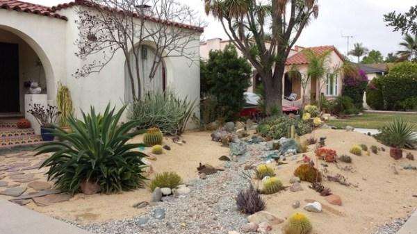 dry streambed in desert garden