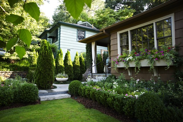 9 LowGrowing Hedges That Make Good Neighbors