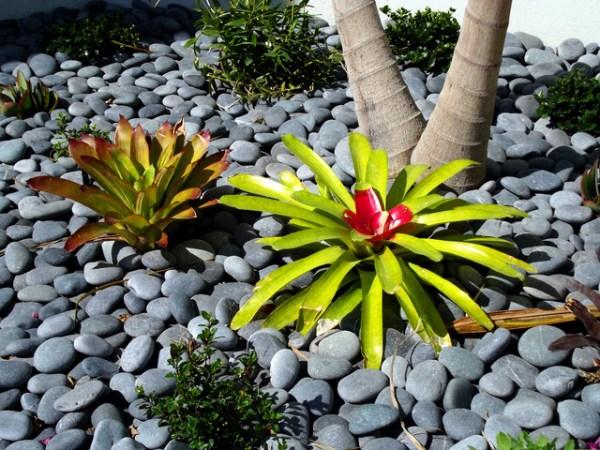 hardscape elements - tropical