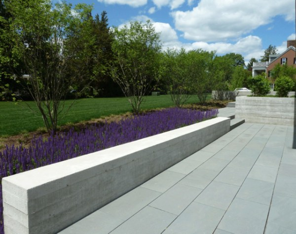 concrete seat-wall with sage