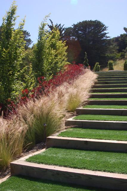 contemporary hillside garden