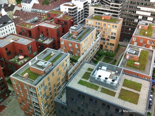 green rooftops in Hamburg