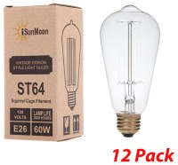 iSunMoon 60 Watt Edison Style Light Bulb, 12Pack, Antique ...