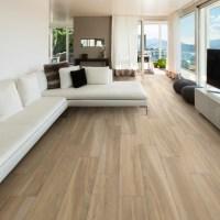 Sav Wood Miele Glazed Porcelain - Modern - Living Room ...