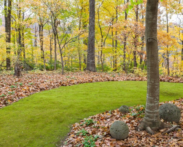 moss & lawns - traditional