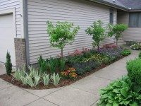 Small Condo Entrance Garden