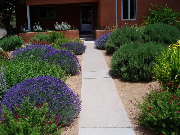 waterwise landscapes - contemporary
