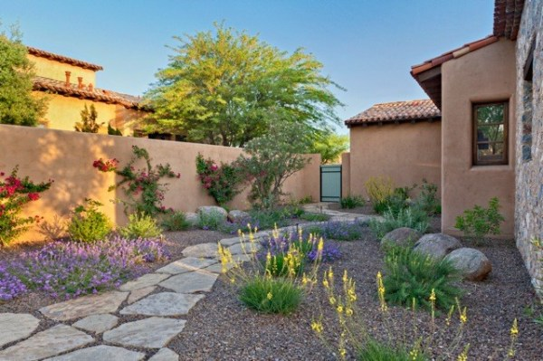 silverleaf colorful xeriscape