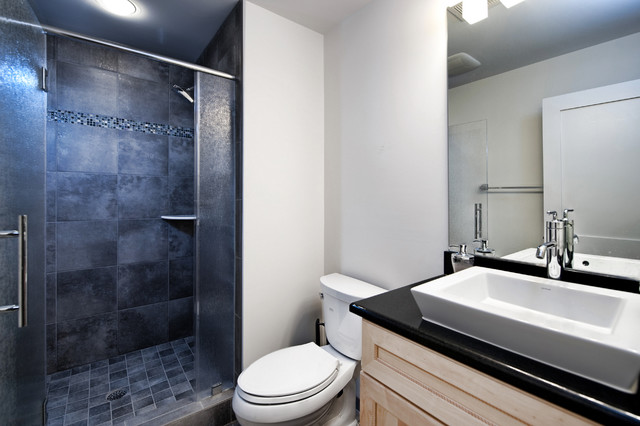 ashburn contemporary basement - bathroom - contemporary - bathroom