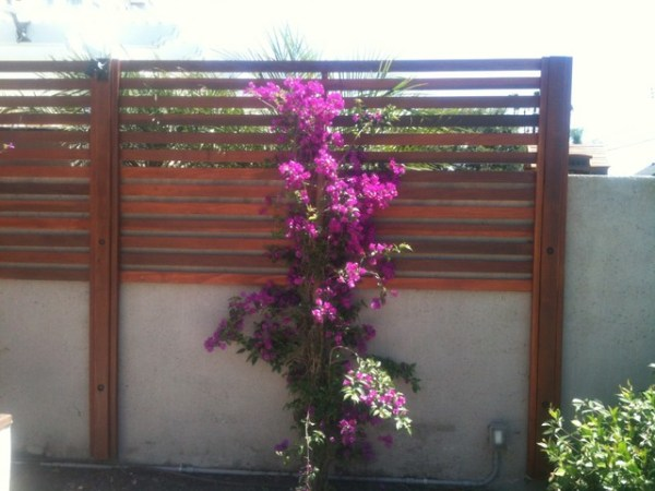 redwood privacy screen - traditional