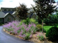 Award Winning Planting Design - Front Yard - Traditional ...