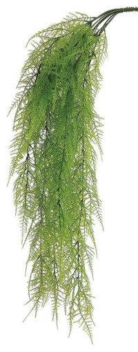 Silk Plants Direct Asparagus Fern Hanging Bush, Pack of 12 ...