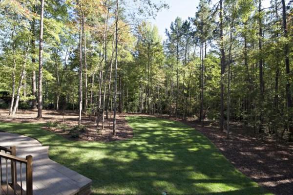 wooded backyard - traditional