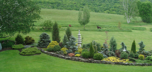 Designing With Conifers How To Unite Your Landscape With These