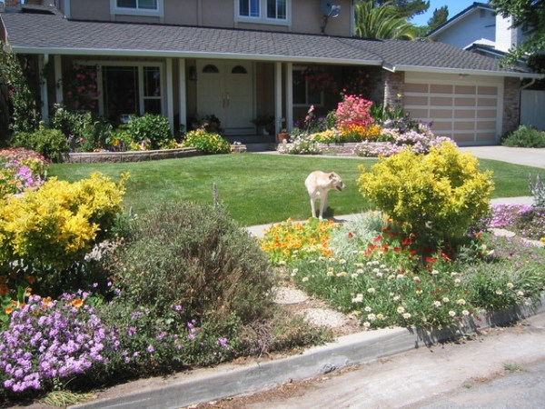 curb appeal with color - eclectic