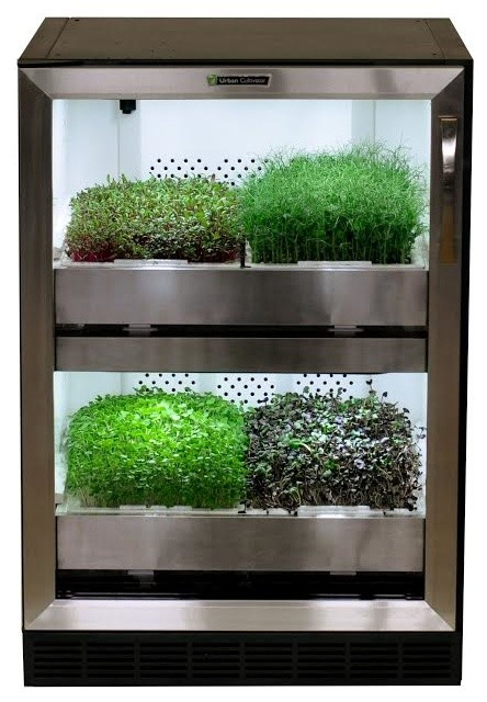 indoor kitchen garden combo herb growing kits even die hard plant killers can t kill urban cultivator residential clear glass