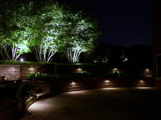 outdoor wall and tree lighting