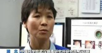 Coronaviruses and plots, the story of Wuhan Shi Zhengli's researcher: the
