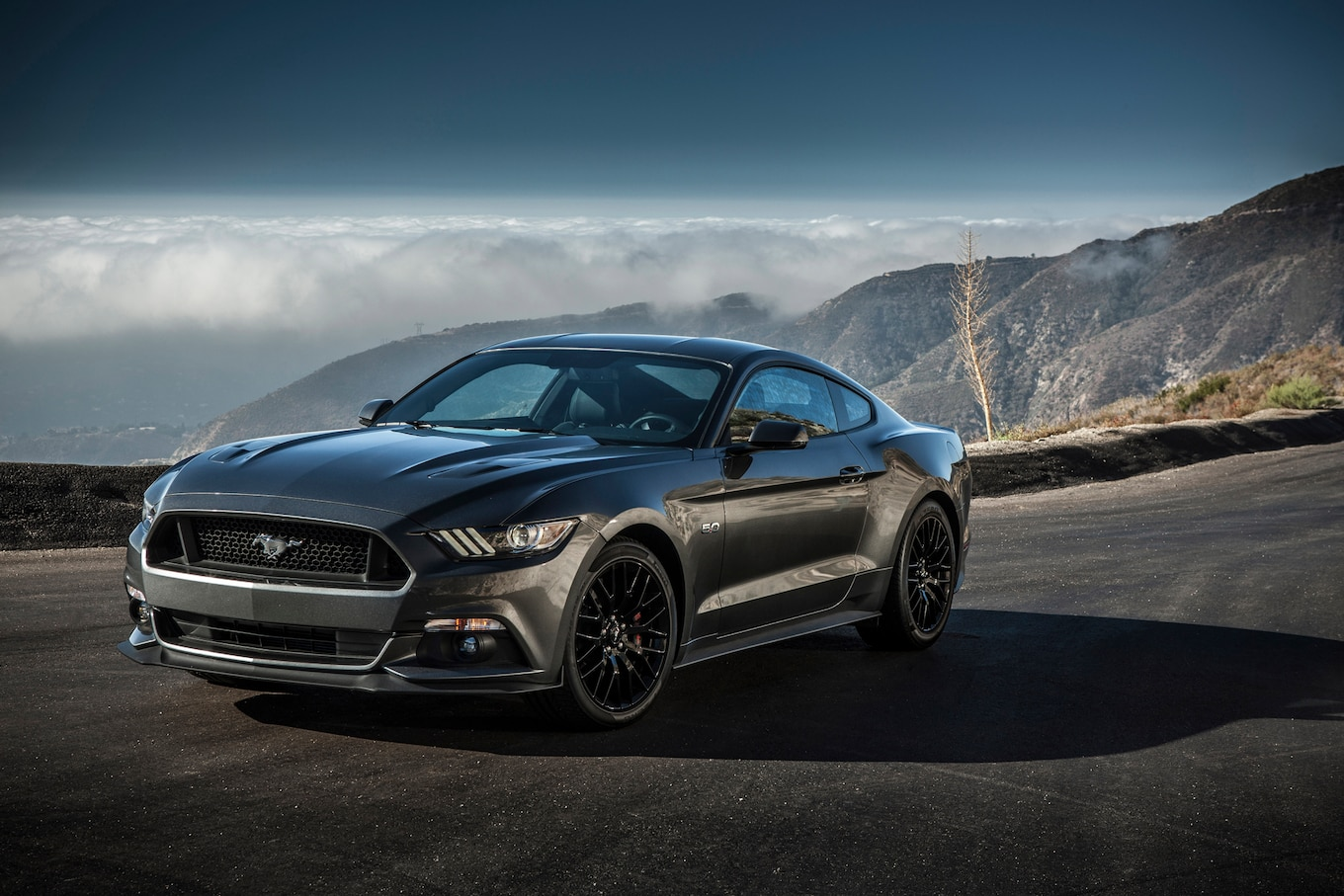2015 Ford Mustang Reviews And Rating  Motor Trend