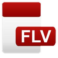 File FLV là gì? Làm thế nào để mở file FLV trên máy tính?