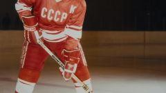 Хоккей конькимен сырғанауды қалай үйренуге болады