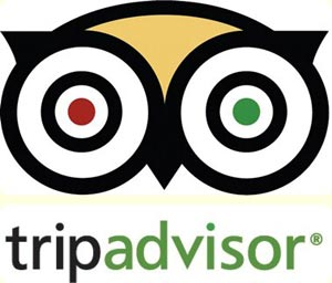 Image result for google tripadvisor