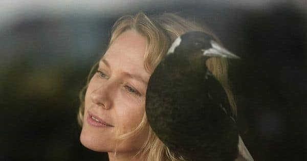 Naomi Watts looks to have delivered one of her career best in this inspiring true story