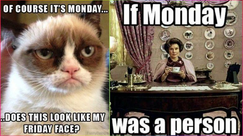 Monday Morning Jokes & Funny Images: Best WhatsApp