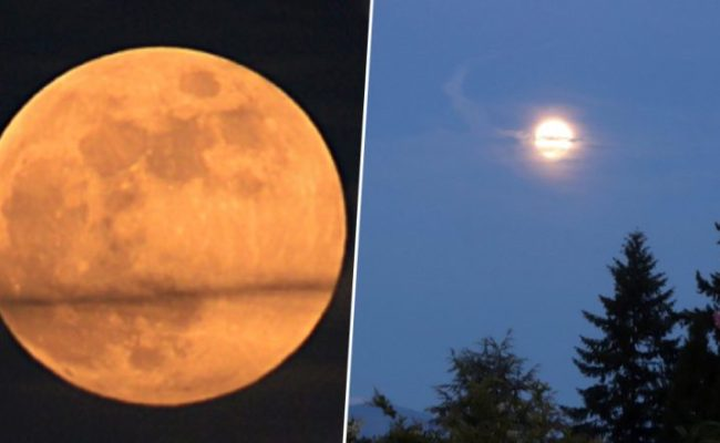 Strawberry Moon 2019 Graces Skies Know Date And Time Of