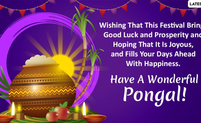 Happy Pongal 2020 Wishes Whatsapp Stickers Thai Pongal